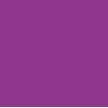 紫狮(上海)网络科技有限公司