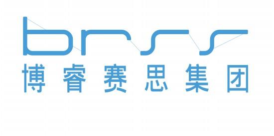 博睿赛思信息系统集成有限公司