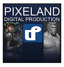 深圳市固有色数码技术有限公司 Pixeland digital